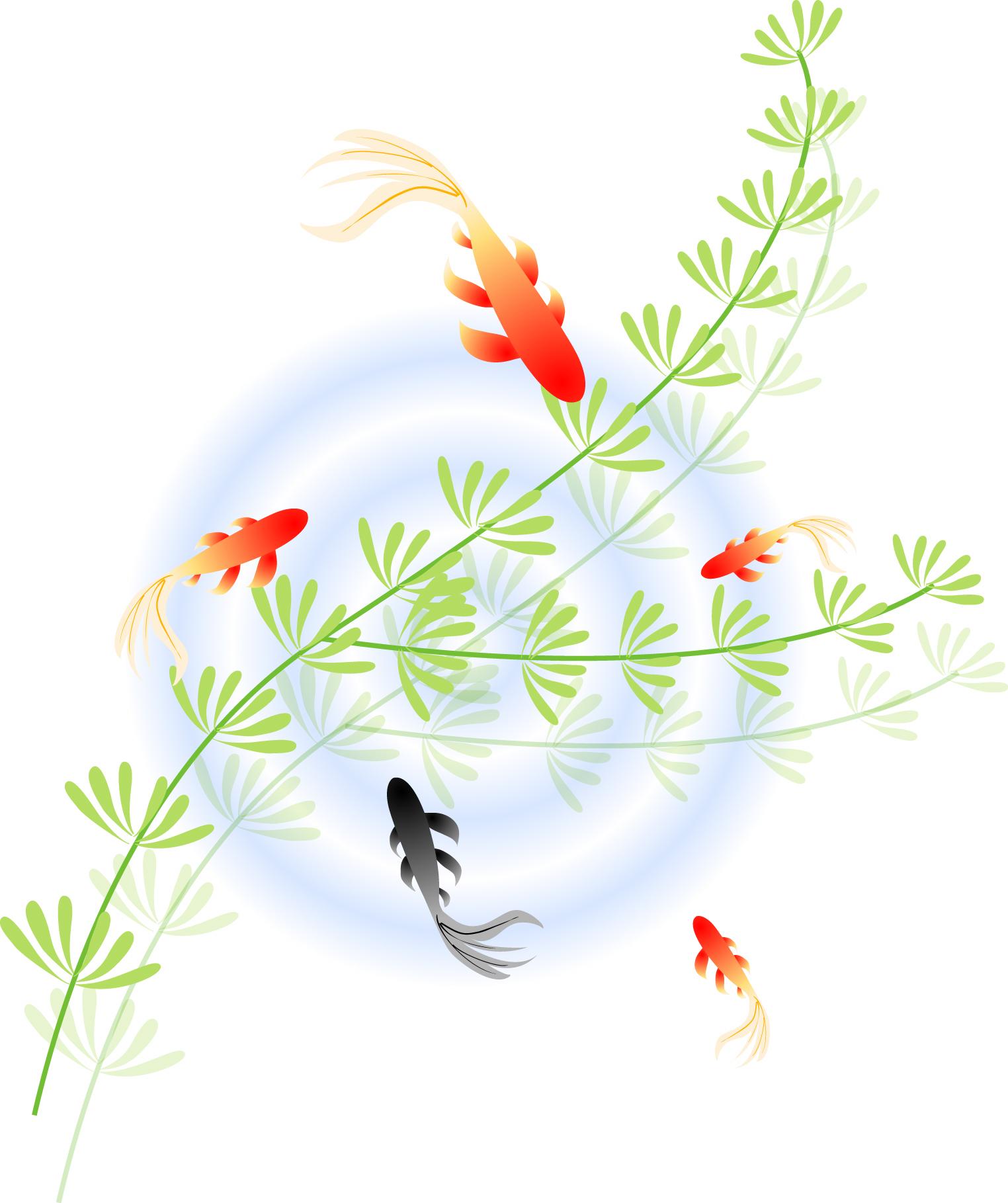 暑中見舞いに無料イラストを使おう!金魚の絵柄で涼しげに♪ | 年賀状