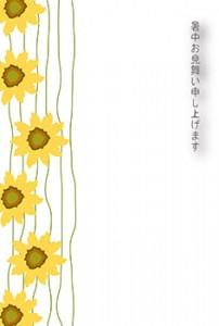 syotyu_irasuto_himawari_tegaki1