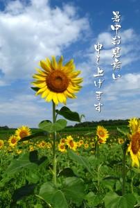 syotyu_tenpu_sawayaka2